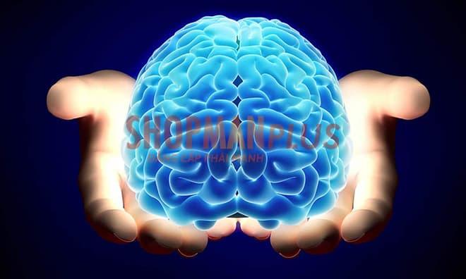 Nâng cao năng lực nhận thức của con người