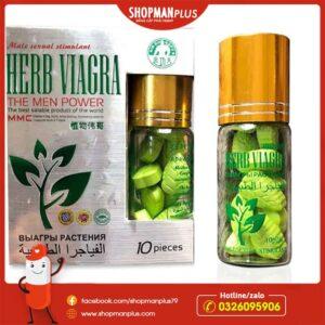 Thảo dược cường dương Herb Viagra
